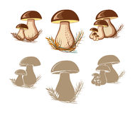 Cep. Edible mushrooms. Isolated silhouettes Royalty Free Stock Image
