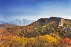 CEP de Autumn Trees de la Gran Muralla del NC imagenes de archivo