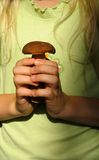 Cep in hands. Child with cep in hands Royalty Free Stock Images