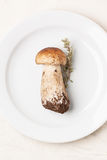 Cep mushroom on white plate Royalty Free Stock Images