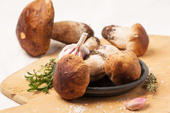 Cep mushrooms with garlic. Heap of cep mushrooms with thyme and garlic served on wooden cutting board Stock Photos