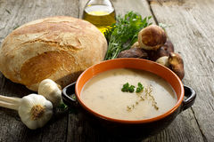 Cep soup. On bowl wirh bread and bottle of olive oil on wood background Stock Images