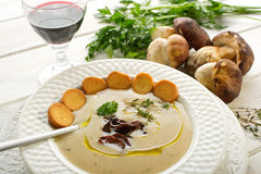 Cep soup Stock Images