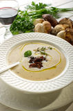 Cep soup Royalty Free Stock Images