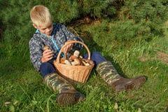 Cepes в корзине, гриб леса Стоковое Фото