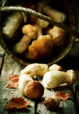Cepes in a basket on an old wooden table stock photos