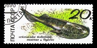Cephalaspid förhistorisk djurserie, circa 1990 Arkivbilder