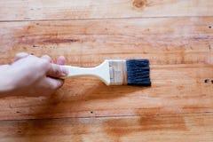 Cepillado para aplicar la pintura del barniz en una superficie de madera Imagen de archivo libre de regalías