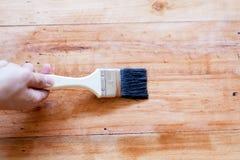 Cepillado para aplicar la pintura del barniz en una superficie de madera Fotografía de archivo libre de regalías