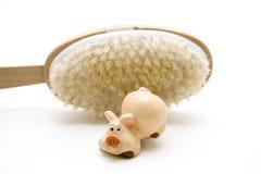 Cepillo de cerámica del cerdo y de la parte posterior Fotos de archivo libres de regalías