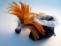 Cepillo de la pluma con el bolso de polvo foto de archivo libre de regalías