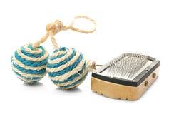 Cepillo de la preparación para los animales domésticos y la bola del juguete, aislado en blanco Imagenes de archivo