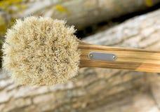 Cepillo de madera con una manija Fotos de archivo libres de regalías