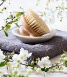 Cepillo del cuerpo para la belleza natural y el lavarse encima de rutina Imágenes de archivo libres de regalías