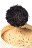 Cepillo del polvo Imagenes de archivo