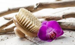 Cepillo trasero para la pureza en el salón de belleza Foto de archivo libre de regalías