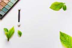 Cepillo y sombras de ojos del maquillaje en el fondo blanco con las hojas verdes Imagen de archivo