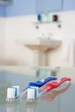 Cepillos de dientes en cuarto de baño Imagenes de archivo