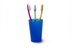 Cepillos de dientes en un sostenedor del color Imagen de archivo libre de regalías