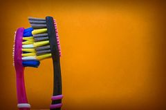 Cepillos de dientes en uno a brazos del ` s Fotos de archivo libres de regalías