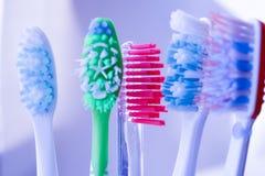 Cepillos de dientes en vidrio   Fotografía de archivo libre de regalías