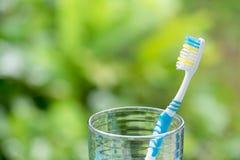 Cepillos de dientes en vidrio en fondo borroso Fotos de archivo libres de regalías