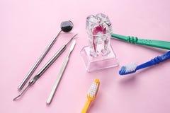 Cepillos de dientes, instrumentos dentales y maqueta del diente Imagen de archivo