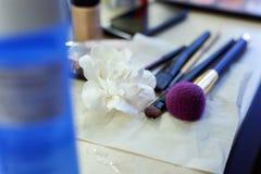 Cepillos del maquillaje, sistema profesional del maquillaje Foto de archivo libre de regalías
