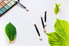 Cepillos y sombras de ojos del maquillaje en el fondo blanco con las hojas verdes Imagenes de archivo
