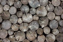 Ceppi asciutti della legna da ardere del fondo Immagine Stock