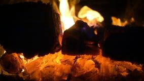 Ceppi brucianti alla stufa video d archivio