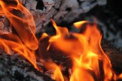 Ceppi brucianti con le fiamme aperte immagine stock