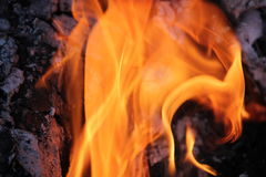 Ceppi brucianti con le fiamme aperte immagini stock