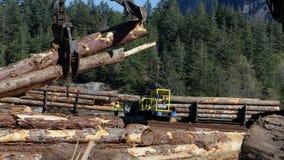 Ceppi commoventi del legname di manupulator dell'artiglio stock footage