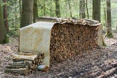 Ceppi dell'albero accatastati su sotto una copertura del rotolo Immagine Stock Libera da Diritti