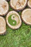 Ceppi di albero sull'erba con il simbolo ying di yang Fotografia Stock Libera da Diritti