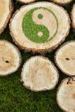 Ceppi di albero sull'erba con il simbolo ying di yang Fotografie Stock