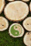 Ceppi di albero sull'erba con il simbolo ying di yang Fotografie Stock Libere da Diritti