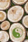 Ceppi di albero sull'erba con il simbolo ying di yang Immagini Stock