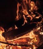 Ceppi di combustione del fuoco Immagine Stock Libera da Diritti