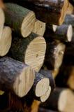 Ceppi di legno Fotografie Stock