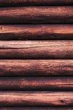 Ceppi di legno con una struttura del foro e della scanalatura fatta dagli insetti Immagine Stock
