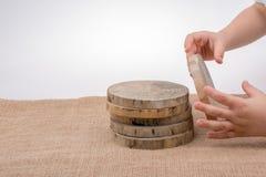 Ceppi di legno tagliati nei pezzi sottili rotondi Immagini Stock Libere da Diritti