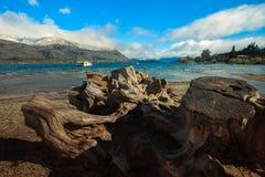 Ceppo di albero di taglio e destinati di viaggio importante del lago del wankak Fotografie Stock Libere da Diritti