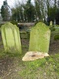 Ceppo di albero nel cimitero Immagine Stock