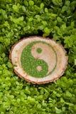 Ceppo di albero sull'erba con il simbolo ying di yang Fotografie Stock