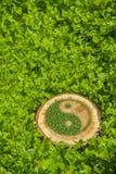 Ceppo di albero sull'erba con il simbolo ying di yang Immagine Stock