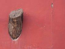 Ceppo di albero sulla parete Immagini Stock Libere da Diritti