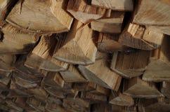 Ceppo di legno Immagini Stock Libere da Diritti