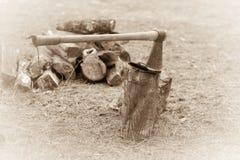 Ceppo di legno di cuoio dello scure Fotografie Stock